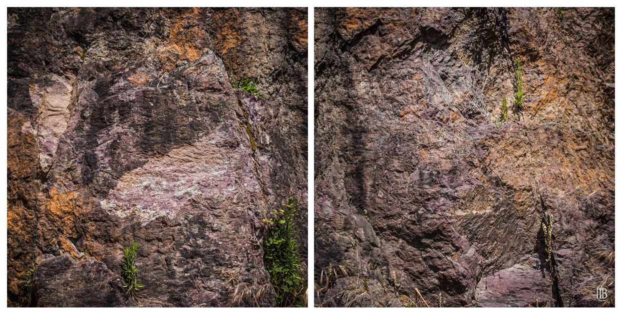 Repérage roche
